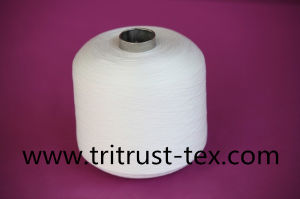 100% Polyester Sewing Yarn (2/30s) pictures & photos