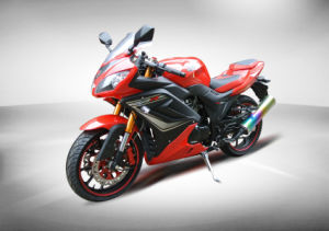 Kawasaki Ninjia Racing Motorbikes (HD250P-18) pictures & photos