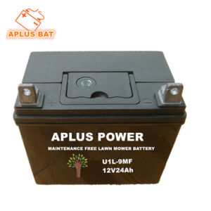 Sealed Maintenance Free Lawn Mower Garden Tool Battery U1l-9 12V24ah pictures & photos