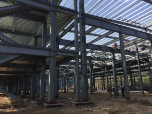 Steel Stucture Metal Frame Factory Building (FLM-042) pictures & photos