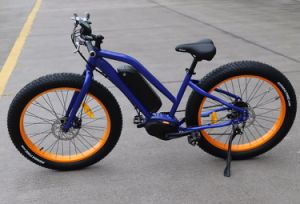 8 Fun Fat Tire Electric Mountain Bicycle From China pictures & photos