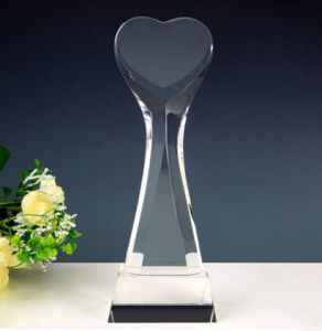 K9 Crystal Glass Trophy Award No. 1 pictures & photos