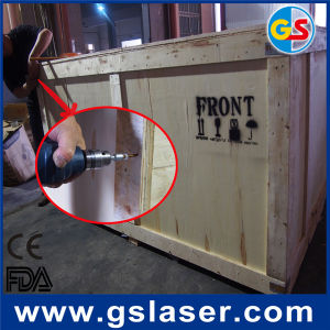 Goldensign GS1610 CCD Laser Cutter pictures & photos