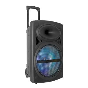 Feiyang /Temeisheng Rechargeable Portable Bluetooth Trolley Speaker pictures & photos