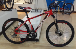 Winner 600 High Quality Mountain Bike (FP-MTB-A068) pictures & photos