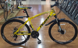 New Beautiful Square Tube Mountain Bike (FP-MTB-P040) pictures & photos