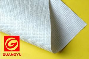 Mesh with Liner 1000*1000 9*9 270g