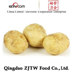 Fresh Potato 150g up