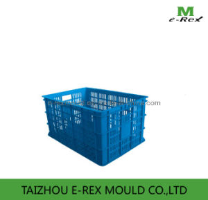 Plastic Circulation Box Mould E-H08