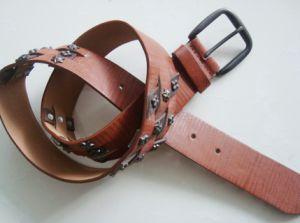 Fashion New Belt (JBJ02772)