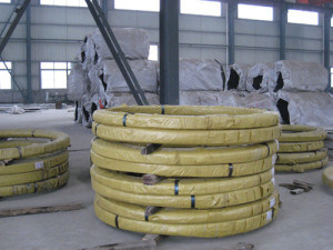 Annealed Spring Steel Wire in Coils pictures & photos