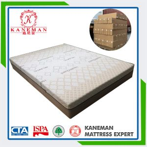 Memory Foam Mattress with Vacuum Box Packed pictures & photos