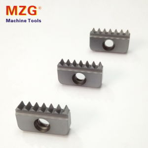 Single Twim ISO Standard Thread Mill Milling Cutting Tool Insert pictures & photos