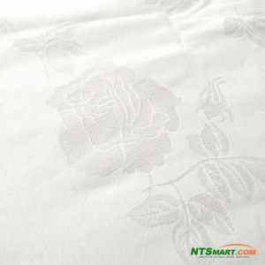 100% Polyester Micro Twill Peach Skin Fabric(N000021597) pictures & photos