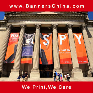 High Quality Hanging Flag Banner pictures & photos