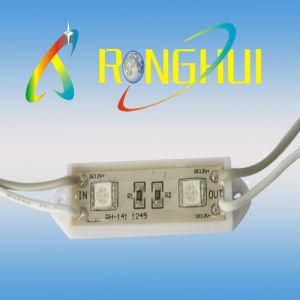 SMD LED Modules (RH-1245RGB2SMD-5050)