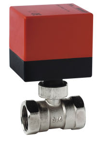 2 Way Motorized Brass Valve 220V (DQ215) pictures & photos