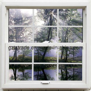 Single Hung Window with Double Glazing pictures & photos
