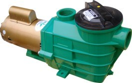 High Flow Rate Swimming Pool Pump for Water Pump pictures & photos