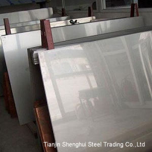 Expert Manufacturer Stainless Steel (AISI317L) pictures & photos