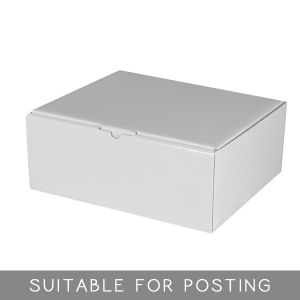 Gloss White Small Shipper Posting Packaging Box pictures & photos