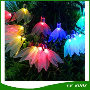 LED String Lights Solar Lamp Decorative Lights Four Leaf Clover Party Lights Christmas Lights 6m 30 LED Garden Waterproof Lamp pictures & photos