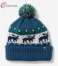 Customized Fashion Jacquard Beanie Hat 17102 pictures & photos