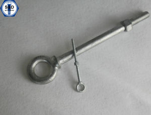 Eye Bolt DIN 444 Screw pictures & photos