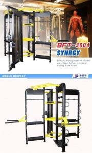Integrated Gym Trainer Crossfit Rig Synrgy 360 pictures & photos