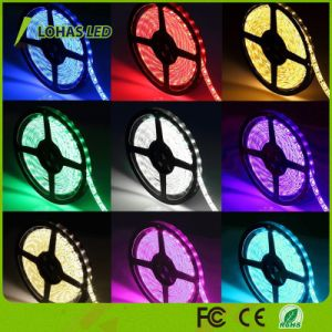 220V 12V RGB LED Strip Light with Remote Controller pictures & photos