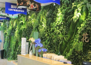 Outdoor Use Artificial Grass Wall Green Wall pictures & photos