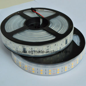 Double Row 5050 Silicone Tube Flexible LED Strip Light pictures & photos