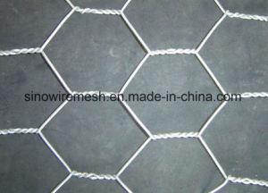 Galvanized Chicken Wire Mesh/Hexagonal Wire Netting pictures & photos