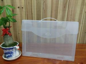 Fashion Multi-Function Documents Messenger Plastic Bags pictures & photos