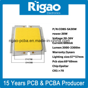 30W LED Floodlight COB LED Source Outdoor pictures & photos