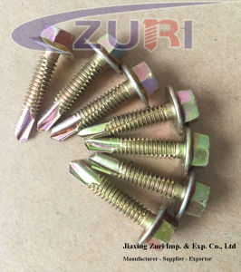 Hexagon Washer/Flange Head Drilling Screws 5.1*25 pictures & photos