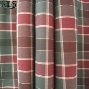 100% Cotton Poplin Woven Yarn Dyed Fabric for Shirts/Dress Rls50-29po pictures & photos