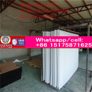 King Kong Network/Anti-Theft Stainless Steel Wire Mesh with Alibaba Assurence pictures & photos