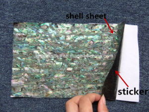 A Grade 14*24cm Flexible Shell Sheet with Sticker for Nail Art pictures & photos