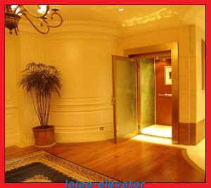 Etched Mirror Hairline Stainless Steel Villa Passenger Home Lift pictures & photos