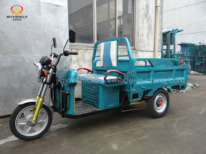 650W 12tubes Electric Cargo Tricycle Electirc Vehicle pictures & photos