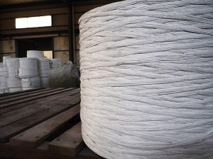 Chinese Cheap&Good Cable Filing PP Yarn pictures & photos