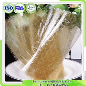 High Quality Raw Material Leaf Gelatin pictures & photos