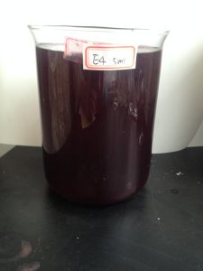 Grape Skin Extract E4 Liquid Grape Skin Red Color pictures & photos