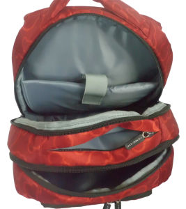 Backpack Laptop Computer Business Nylon Popular Camping Leisure 15′′ Laptop Bag pictures & photos