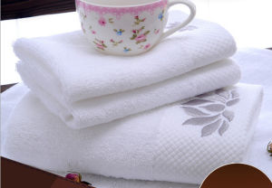 100% Cotton Plain Embroidery Hotel Terry Bath Towel Factory pictures & photos