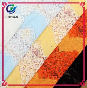 Jacquard Lace Fabric for Garment Accessories pictures & photos