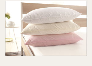 4 Season Goose Duck Down Feather Pillow for Home