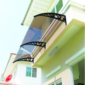 1000*1200mm Stainless Steel Frame Roof Polycarbonate Awning pictures & photos