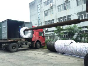 High Quality Alloy Steel Wire Ml20mntib with Phosphate Coated pictures & photos